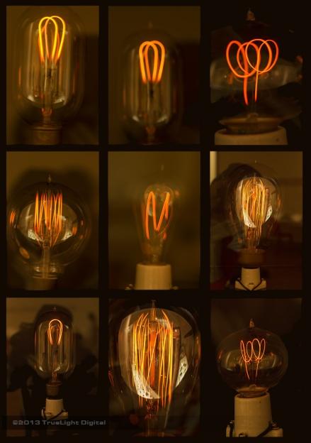 20130316_bulbs2